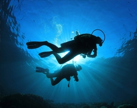 Underwater video (Relax)